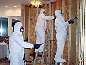 GreenStar Mold Remediatiors