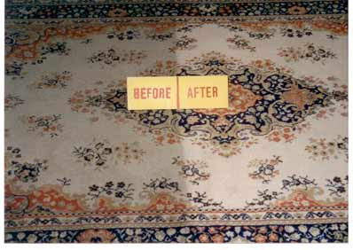 Antique Persian Rug Msp Cleaning